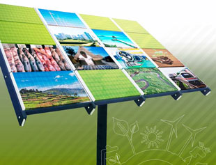 UNEP Green Economy