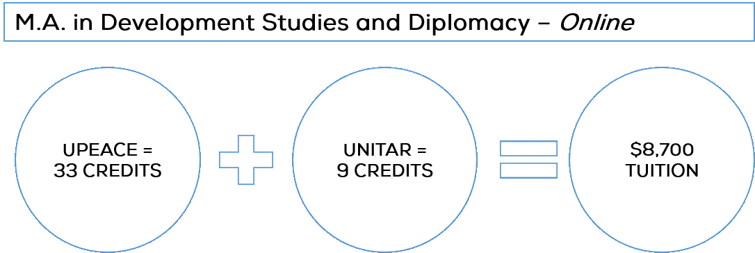 M.A. in Development Studies and Diplomacy: Online