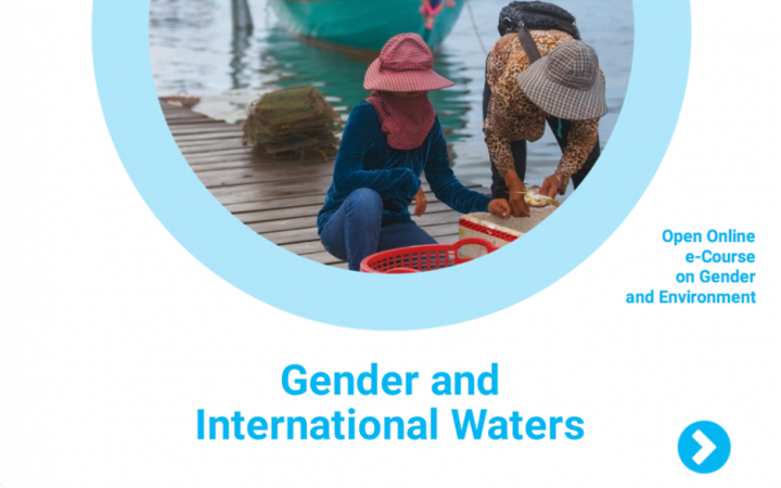 Cover of the Module on Gender and International Waters
