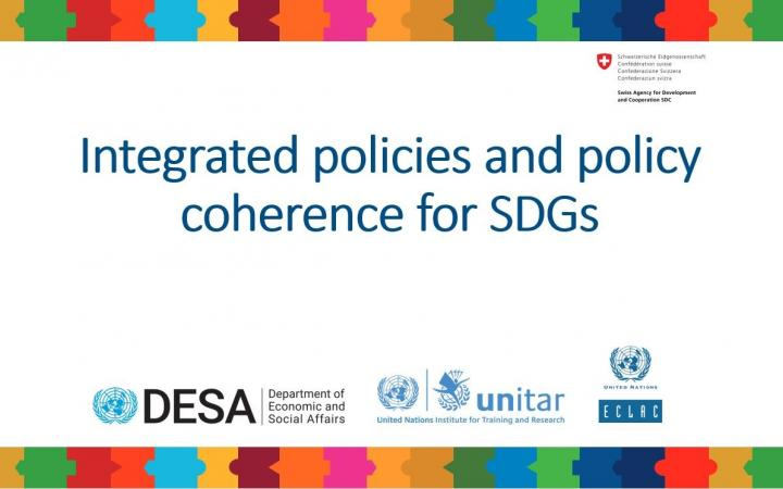 Banner_EN_Integrated policies and policy coherence for SDGs.jpg