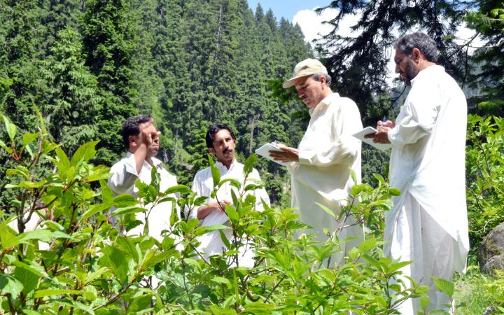 E-courses on climate change are impacting forest communities in northern Pakistan