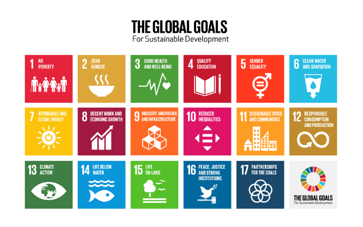 NAPs and the Sustainable Development Goals