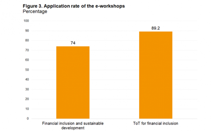 Application of knowledge and skills from e-workshops
