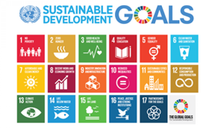 Unitar To Partner With The Sdg Fund To Strengthen The Partnership Between The Un And The Business Community In Attaining The Sdgs By 2030 Unitar