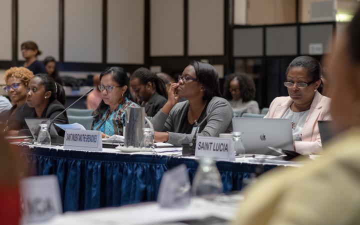 participants at CARIBBEAN LEARNING CONFERENCE ON A HOLISTIC IMPLEMENTATION OF THE 2030 AGENDA