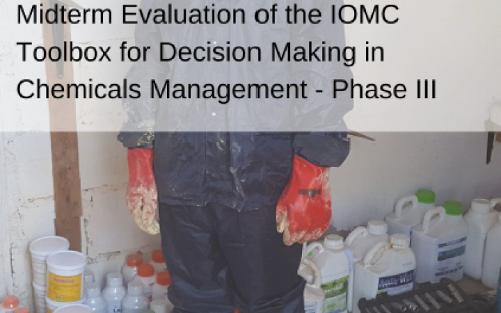 Independent mid-term Evaluation of the Inter-Organization Programme for the Sound Management of Chemicals (IOMC) Toolbox for Decision Making in Chemicals Management – Phase III Project