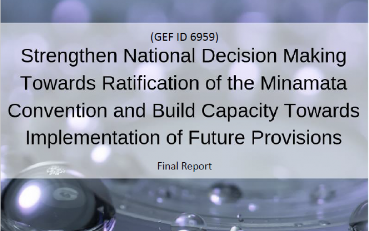 "Independent Evaluation of the ""Strengthen National Decision Making Towards Ratification of the Minamata Convention and Build Capacity Towards Implementation of Future Provisions"" project"