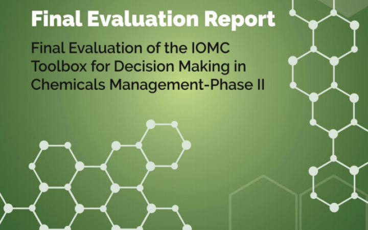 Final Evaluation of the IOMC Toolbox for Decision Making in Chemicals Management – Phase II