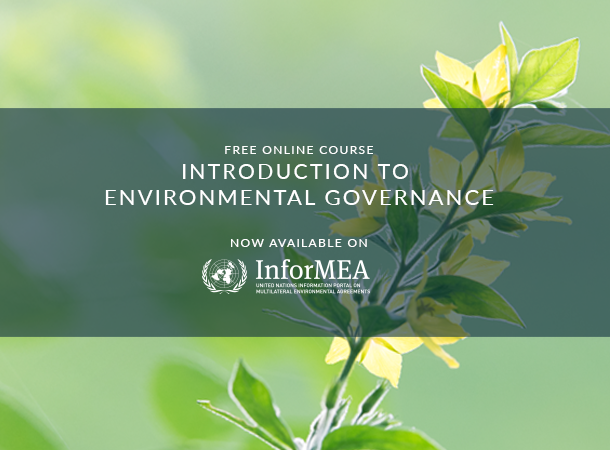 UNITAR and UN Environment Launch New Course on Environmental Governance