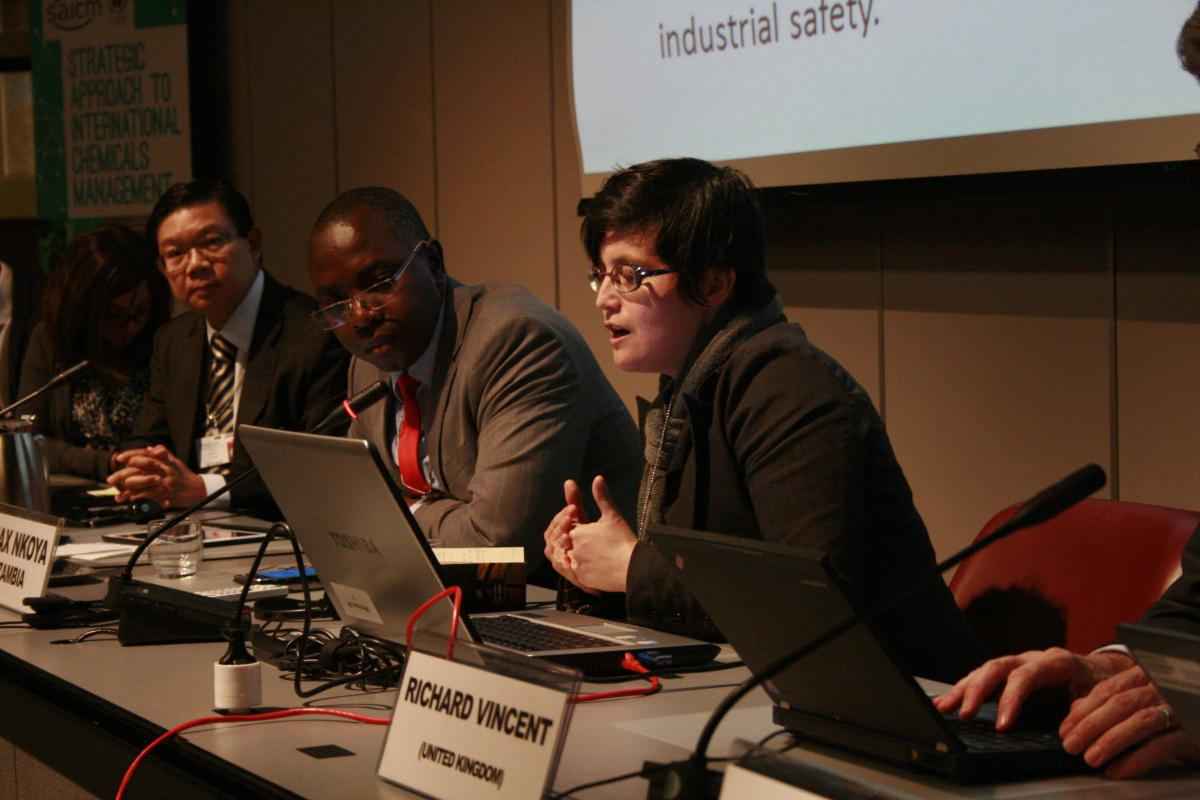 ICCM4 nano side event – UNITAR/ Switzerland/ OECD