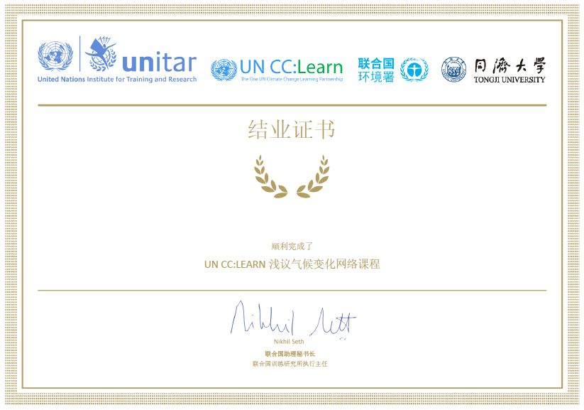Chinese version of the certificate of completion