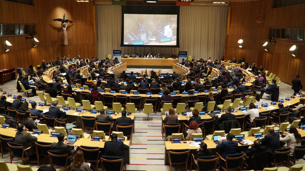 The ECOSOC Trusteeship Council