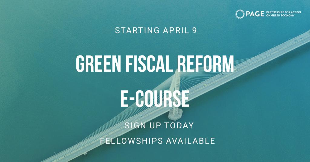 Photo 1: PAGE e-Learning Course on Green Fiscal Reform.