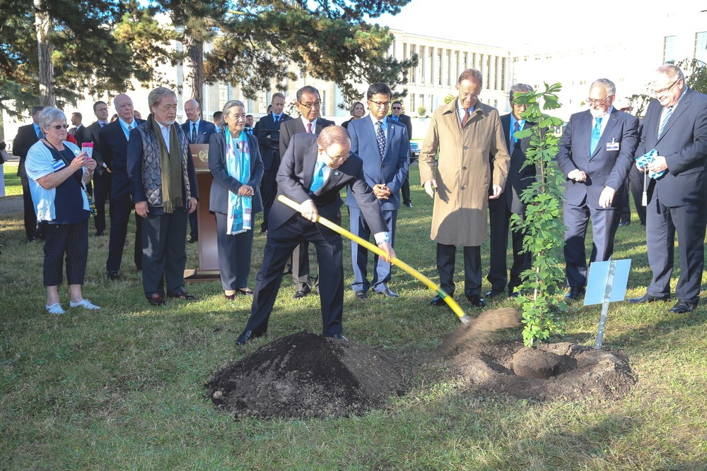 Green Legacy Hiroshima tree planting in the UN HQ in Geneva