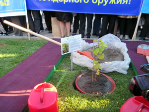 Green Legacy Hiroshima Initiative - City of Semey, Kazakhstan