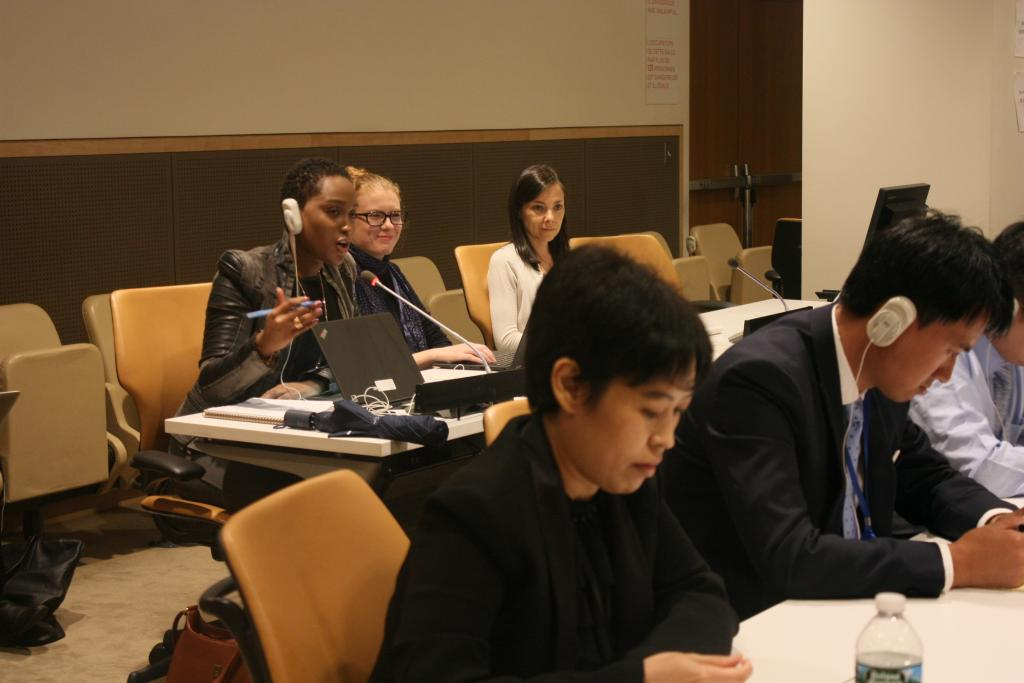 Course for New Delegates on the Fifth Committee Continues