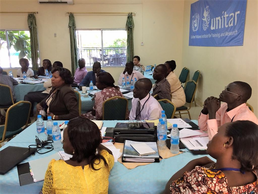 UNITAR South Sudan Fellowship Programme 2015 WS1